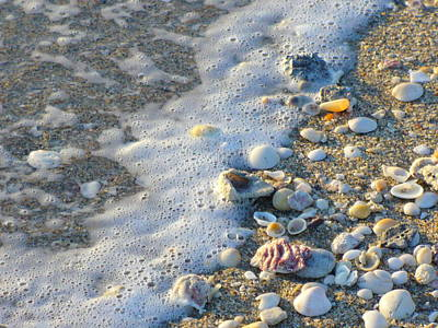 Photograph - Surf And Shells by Peggy King