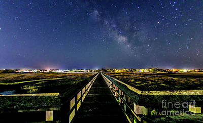 Photograph - Surf City Stars by DJA Images