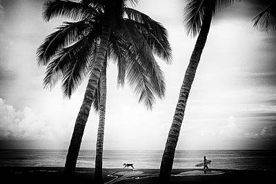 Photograph - Surf Mates by Nik West