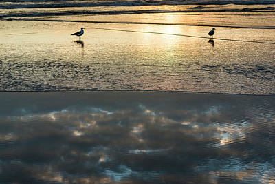 Photograph - Surf Reflection by Robert Potts