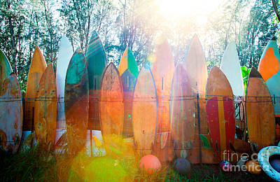 Monica Sweet Photograph - Surfboards Sun Flare by Monica and Michael Sweet