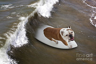 Surfer Dog Art Print