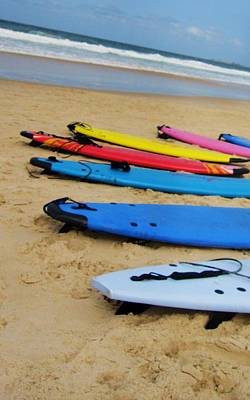 Unschooling Photograph - Surfs Up by Joe  Martin
