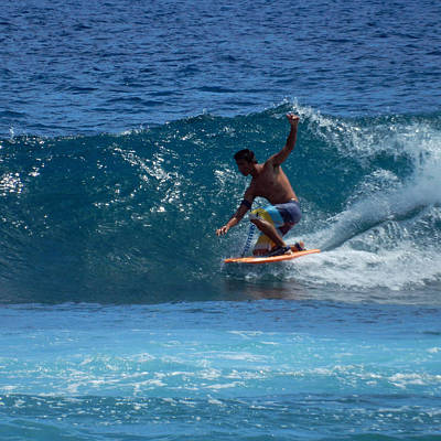 Photograph - Surf's Up by Pamela Walton