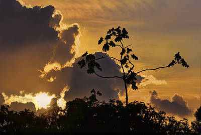 Photograph - Suriname Sunset by Nadia Sanowar