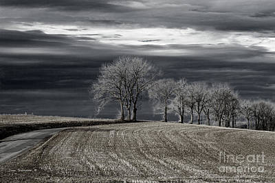 Photograph - Surreal Countryside by John Stephens