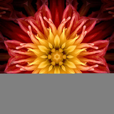 Surreal Flower No.1 Art Print
