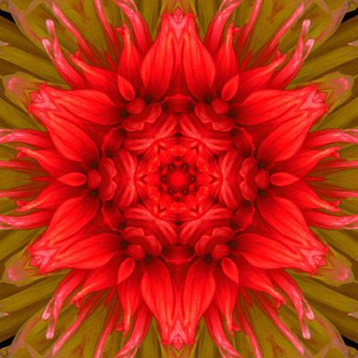 Surreal Flower No.6 Art Print