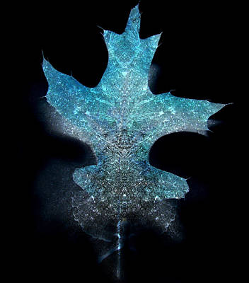 Best Sellers - Surrealism Royalty-Free and Rights-Managed Images - Surreal Ice Leaf by Adam Long