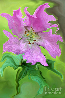 Photograph - Surreal Wild Flower by Rick Rauzi