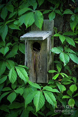 Photograph - The Poison Surrounds Bird House Art by Reid Callaway