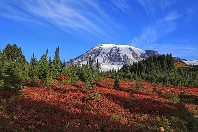 Photograph - Surrounded By Fall Colors by Lynn Hopwood