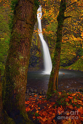 Waterfall Photograph - Surrounded By The Season by Mike  Dawson