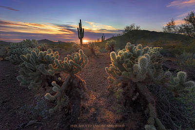 Cactus Photograph - Surrounded by Philip Shultz