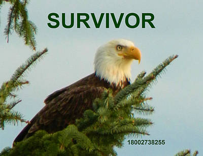 Anti-bullying Photograph - Survivor With Hotline by Gallery Of Hope