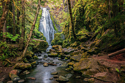Photograph - Susan Creek Falls by Maria Coulson