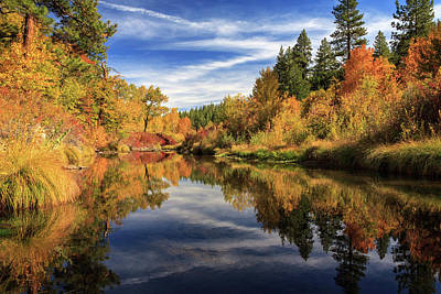 Photograph - Susan River 10-28-12 by James Eddy