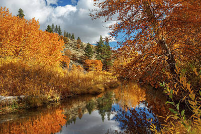 Photograph - Susan River Reflections by James Eddy