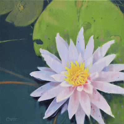 Painting - Susan's Water Lily by Todd Baxter