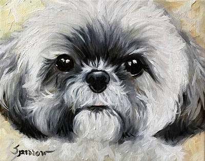 Shih Tzu Painting - Sushi by Mary Sparrow