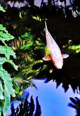 Photograph - Suspended Ghost Koi   by Kirsten Giving
