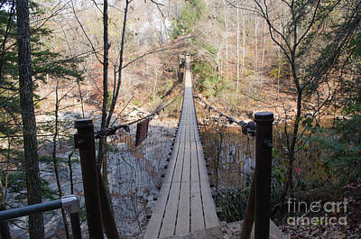 Photograph - Suspension Bridge At Fall Creek Falls State Park by Donna Brown