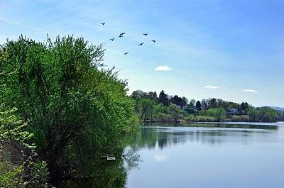Photograph - Susquehanna Serenty by Stephanie Calhoun
