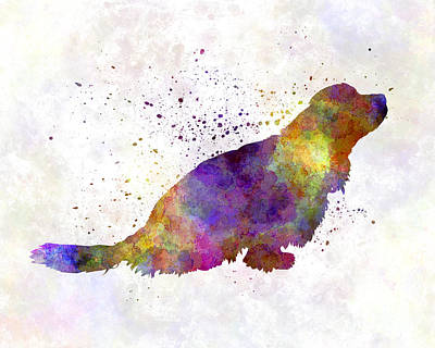 Sussex Spaniel In Watercolor Art Print