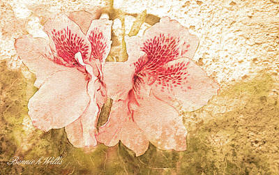 Art Print featuring the photograph Sutle Harmony by Bonnie Willis