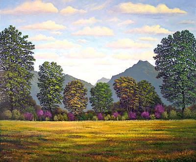 Sutter Buttes In Springtime Art Print by Frank Wilson