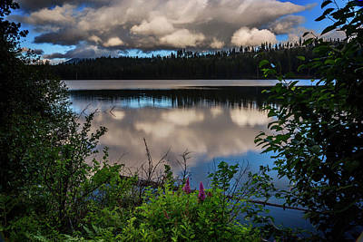 Photograph - Suttle Lake by Cat Connor