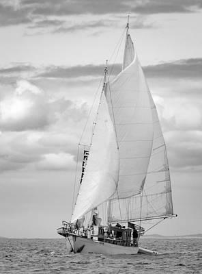 Photograph - Suva Bw by Bob VonDrachek