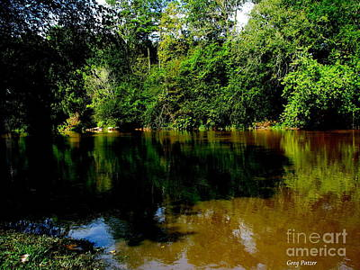 Suwannee River Art Print by Greg Patzer