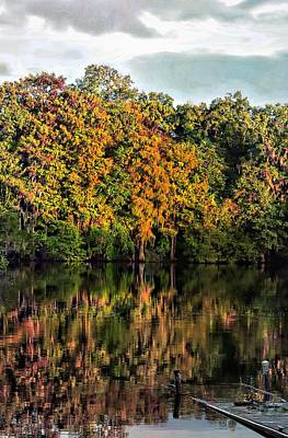 Photograph - Suwannee River October by Sheri McLeroy
