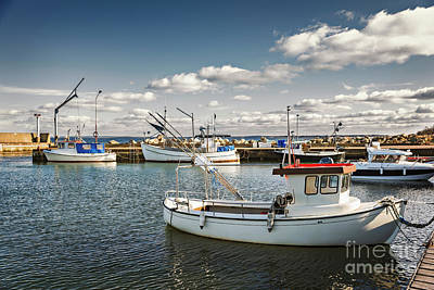 Photograph - Svanshall Harbour Sweden by Sophie McAulay