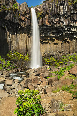 Photograph - Svartifoss Waterfall by Stuart Gordon