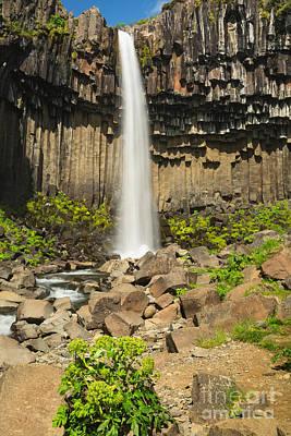 Photograph - Svartifoss Waterfall by Stuart Gordon