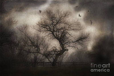 Svetlana's Tree Print by Spokenin RED