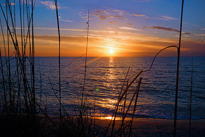 Photograph - Sw Florida Sunset by Robb Stan