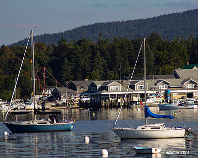 Photograph - Sw Harbor Port by Dick Botkin