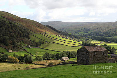 Photograph - Swaledale  Yorkshire Dales by Paula Guttilla