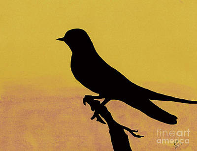 Drawing - Swallow At Sunset by D Hackett