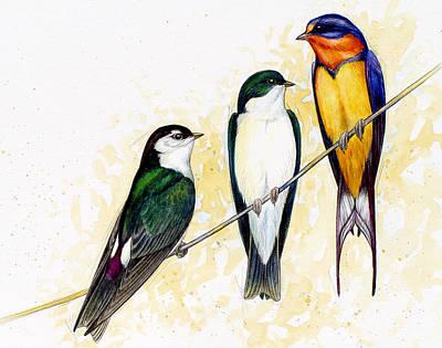 Painting - Swallows by Shari Erickson