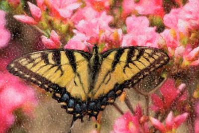Digital Art - Swallowtail Butterfly Painting by Jill Lang