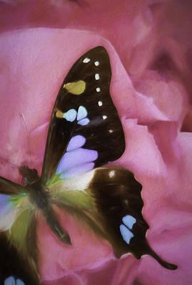 Flutter Photograph - Swallowtail Dreams by Janet Fikar
