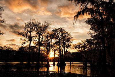 Photograph - Swamp At Sunrise by Katherine Worley