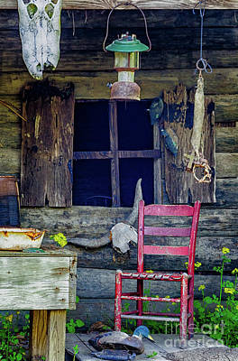 Photograph - Swamp Cabin Louisiana by Kathleen K Parker