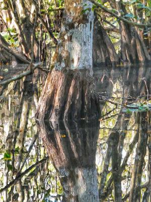 Photograph - Swamp Life IIi by Kathi Isserman