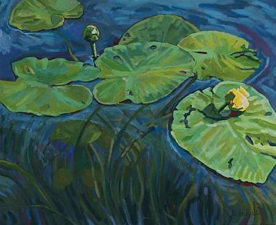 Swamp Lilies Original by Phil Chadwick