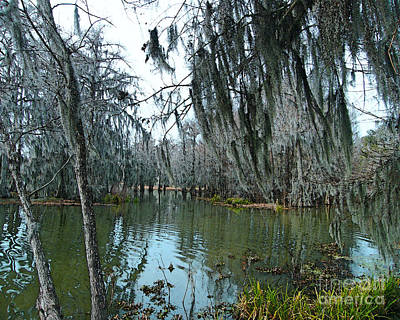 Photograph - Swamp Moss  Lake Martin La by Lizi Beard-Ward